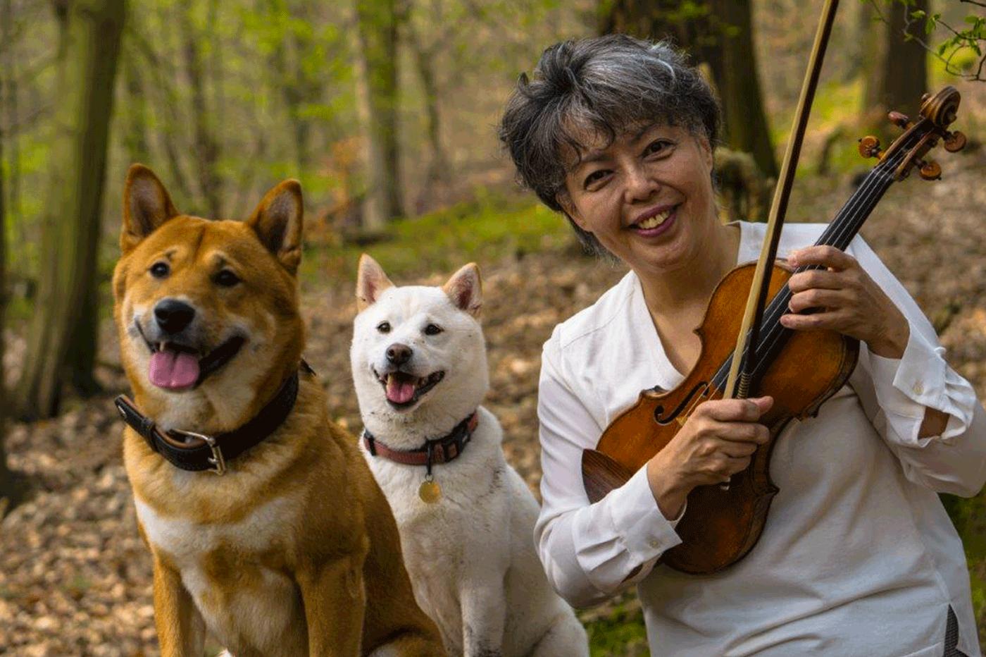 shiba lucky yuzuko horigome lily violin